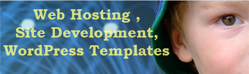 Web Hosting , Site Development, WordPress Templates